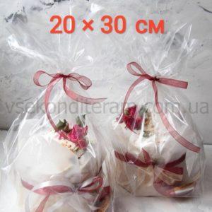 пакет полипропиленовый 20х30 см